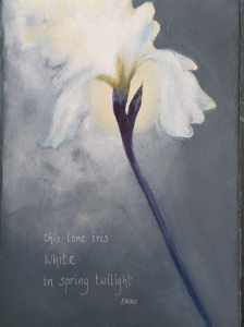 this lone iris white in spring twilight