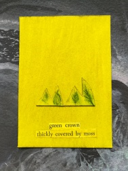 green crown thickly covered by moss